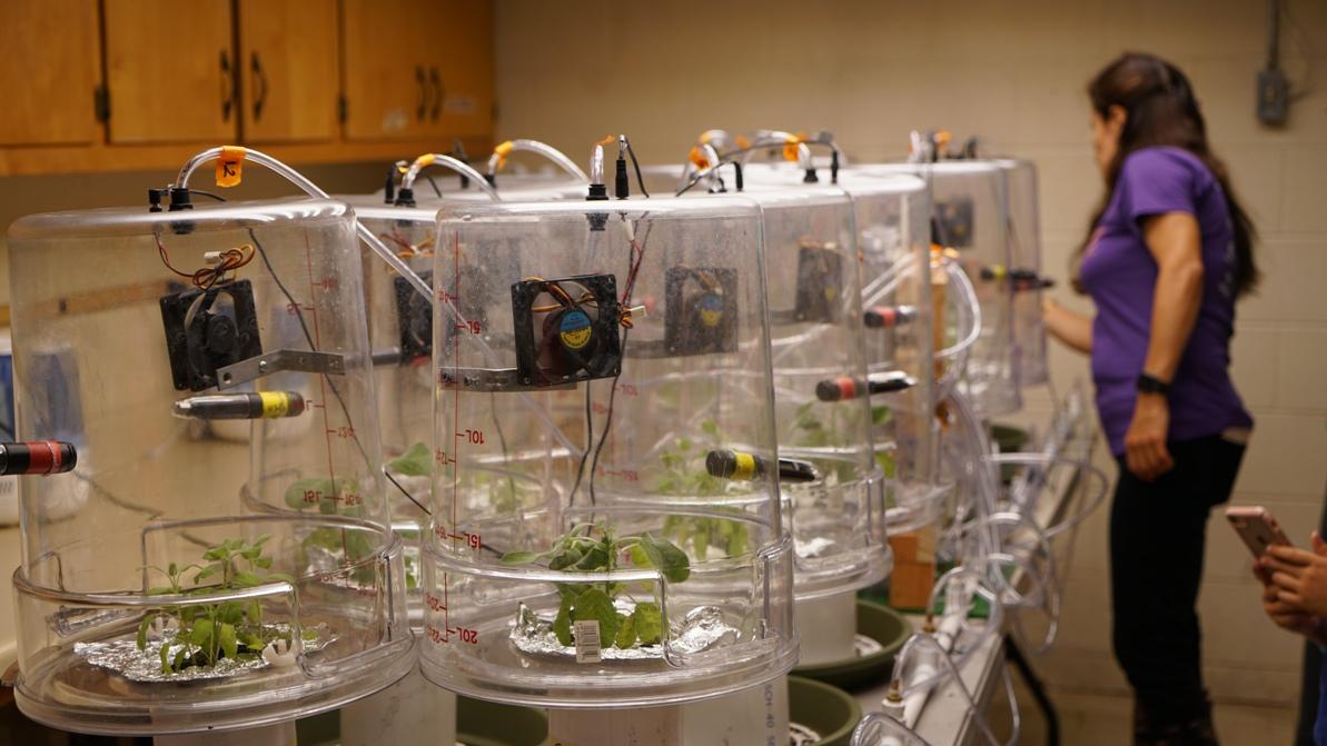 WTREC Lab