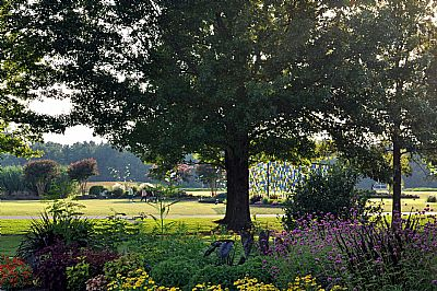 UT Gardens in Jackson
